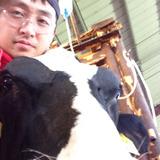 Cowbo from Van Wert | Man | 37 years old | Libra